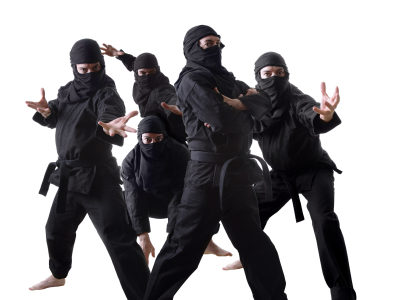 ninja pic